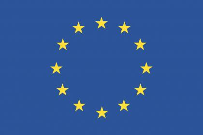 The EU VAT system