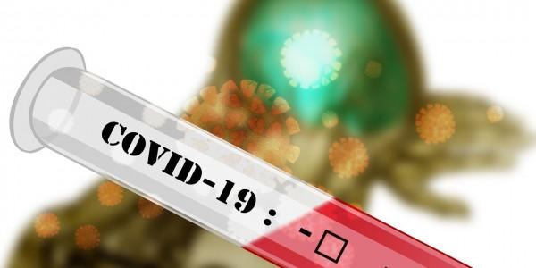 Covid-19 Disruption
